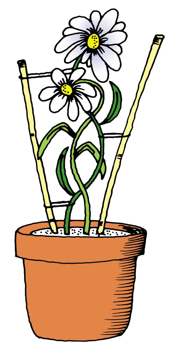 blomman-till-anhoriga-i-danderyd